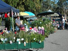 Meadows Monthly Market - WA Accommodation