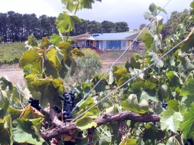 Zimmermann Wine - WA Accommodation