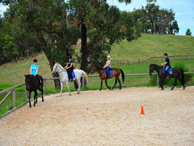 Megan Jones Riding School and Trail Rides - WA Accommodation