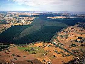 Mount Crawford Forest Reserve - WA Accommodation