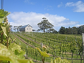 Bruny Island Premium Wines Bar and Grill - WA Accommodation