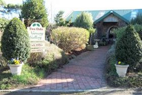 Two Oaks Nursery Gallery and Cafe - WA Accommodation