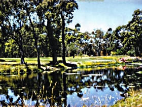 Smithton Country Club - WA Accommodation