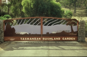 Tasmanian Bushland Garden - WA Accommodation