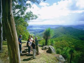 Gold Coast Hinterland Great Walk - WA Accommodation