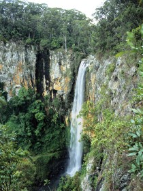 Gondwana Rainforests of Australia - WA Accommodation