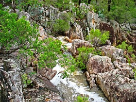 Crows Nest National Park - WA Accommodation