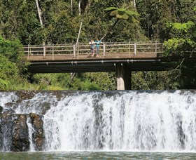 Malanda Falls Conservation Park - WA Accommodation