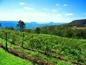 Preston Peak Wines - WA Accommodation