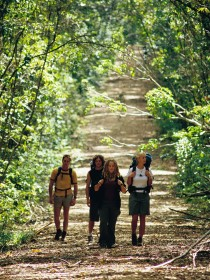 Wet Tropics Great Walk - WA Accommodation