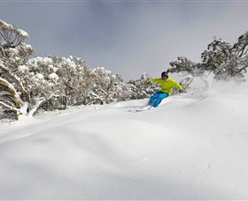 Mt Buller and Mt Stirling Alpine Resort - WA Accommodation