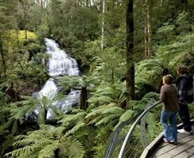 Great Otway National Park - WA Accommodation