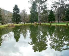 Mountain Fresh Trout and Salmon Farm - WA Accommodation