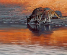 Steve Morvell Wildlife Art - WA Accommodation