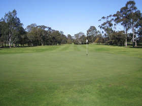 Maffra Golf Club - WA Accommodation