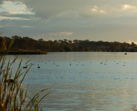 Lake Inverell Reserve - WA Accommodation