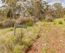 Old Mountain Road Walking Track - WA Accommodation