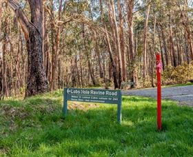 Lobs Hole Ravine 4WD Trail - WA Accommodation