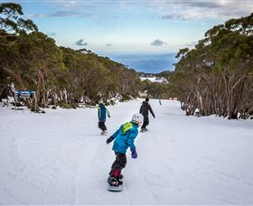 Mt Baw Baw Alpine Resort - WA Accommodation