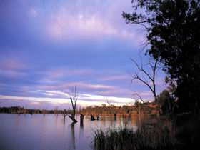 Loch Luna Game Reserve and Moorook Game Reserve - WA Accommodation