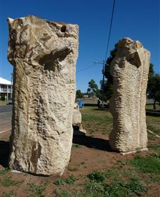 Fossilised Forrest Sculptures - WA Accommodation
