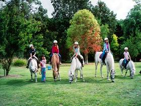 Limestone Coast Horseriding - WA Accommodation
