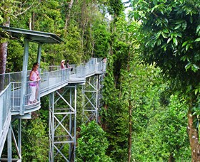 Mamu Tropical Skywalk - WA Accommodation