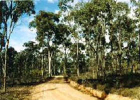 Paddys Ranges State Park - WA Accommodation