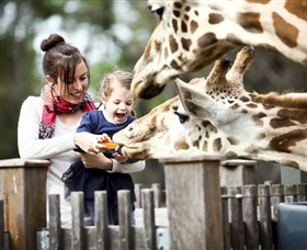 Taronga Western Plains Zoo Dubbo - WA Accommodation