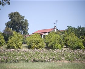 Samaria Farm - WA Accommodation