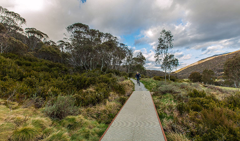 Thredbo Valley track - WA Accommodation