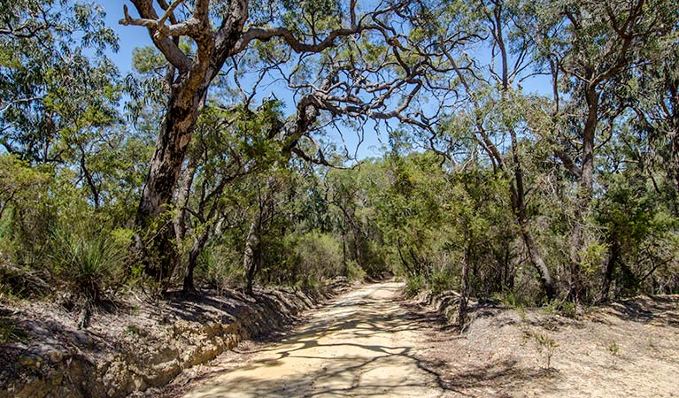 Howes trail - WA Accommodation