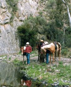 Yarramba Horse Riding - WA Accommodation