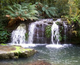Barrington Tops National Park Walks - WA Accommodation