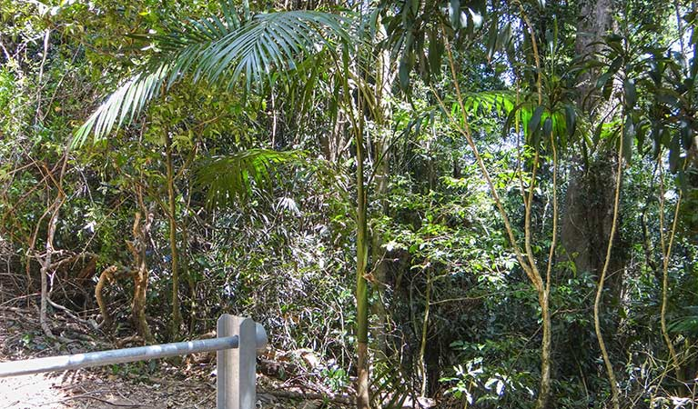 Goorgana walking track - WA Accommodation