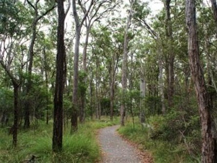 Caboolture Regional Environment Education Centre - Walking Trails - WA Accommodation