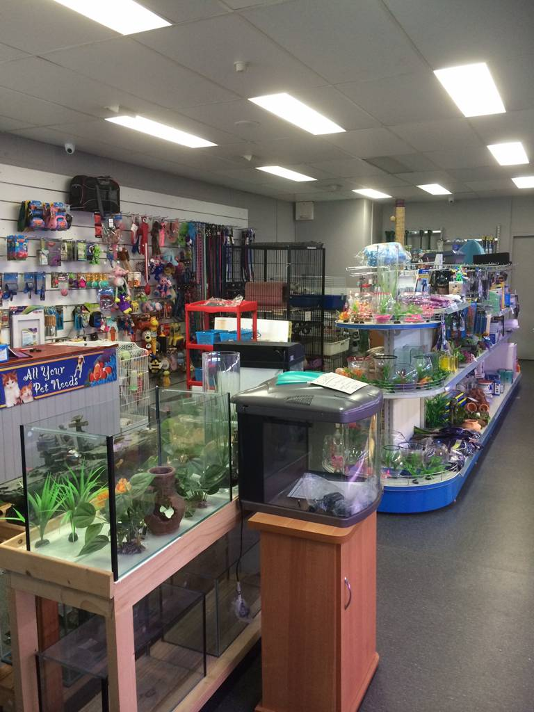 Nambour Pet Shop - WA Accommodation