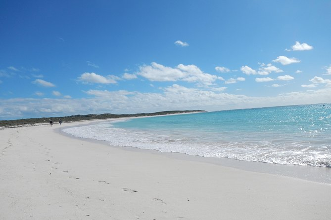 Abrolhos Islands Shipwreck Air and Land Tour from Geraldton - WA Accommodation