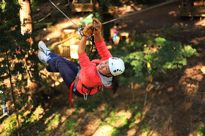 Trees Adventure Lane Poole Park - Treetop  Zipline Experience - WA Accommodation