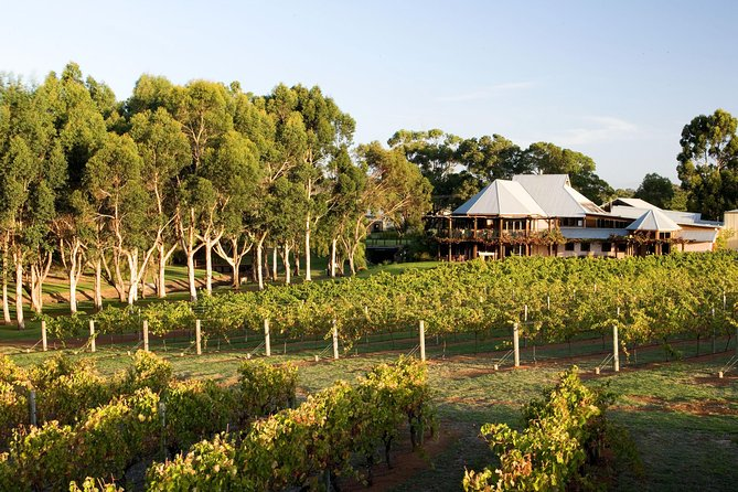 Margaret River and Geographe Bay Region Day Trip from Perth - WA Accommodation
