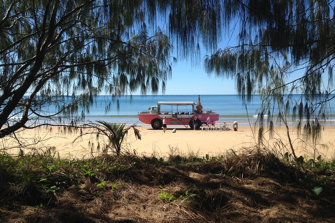 1770 Coastline Tour by LARC Amphibious Vehicle Including Picnic Lunch - WA Accommodation