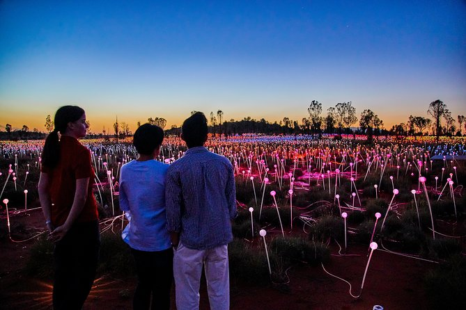 Uluru Field of Light Sunrise Tour - WA Accommodation