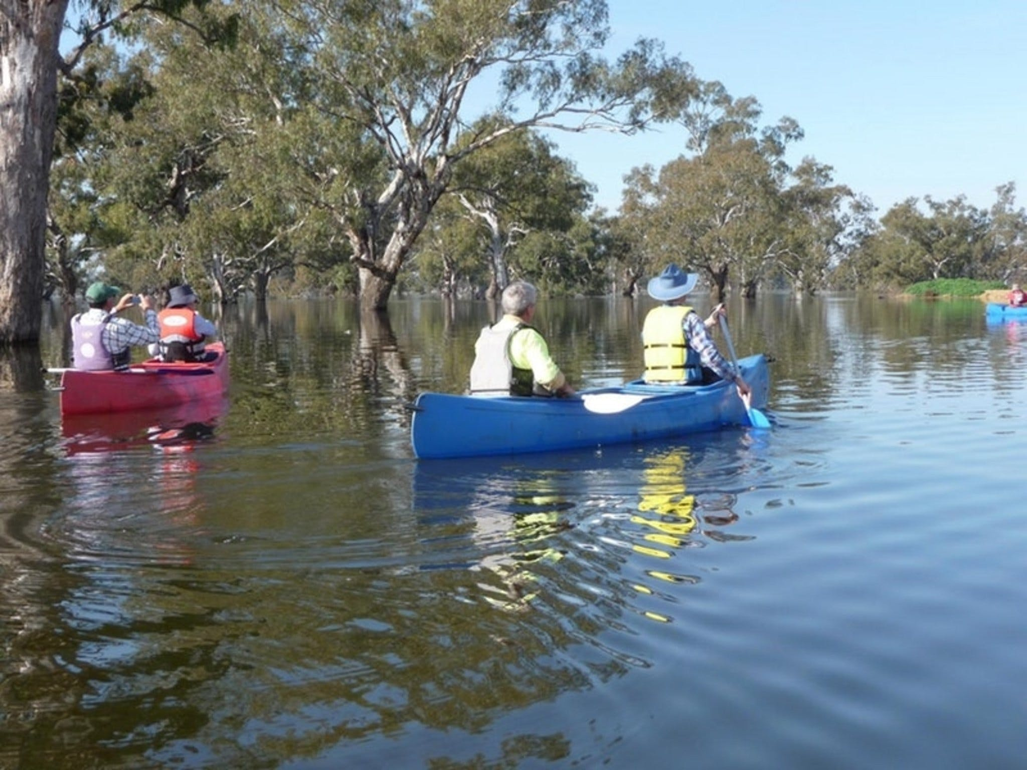 Doodle Cooma Swamp - WA Accommodation