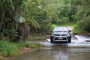 The Pioneer Valley and Eungella National Park - WA Accommodation