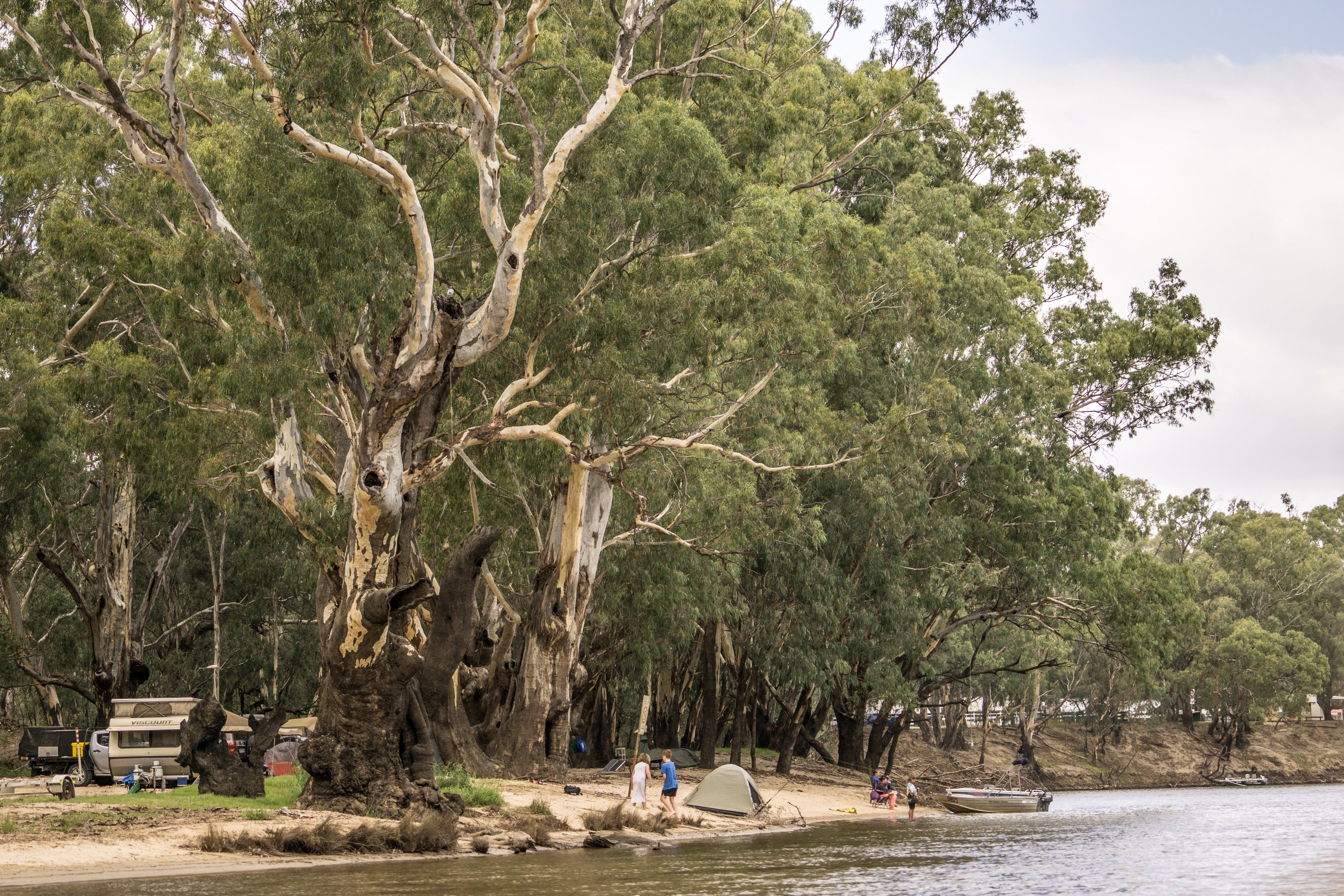 Edward River - WA Accommodation