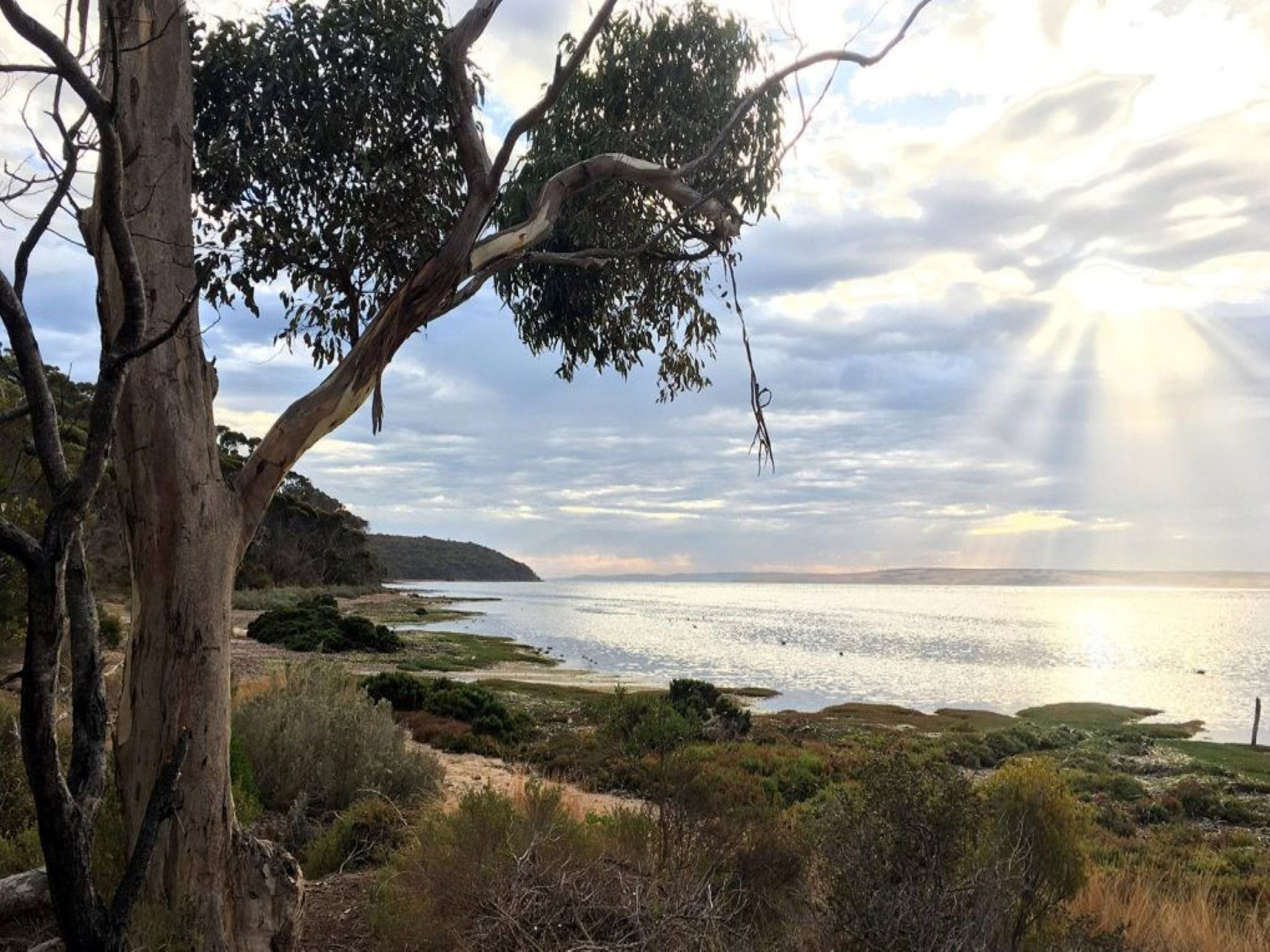 Fish Cannery Walking Trail - WA Accommodation