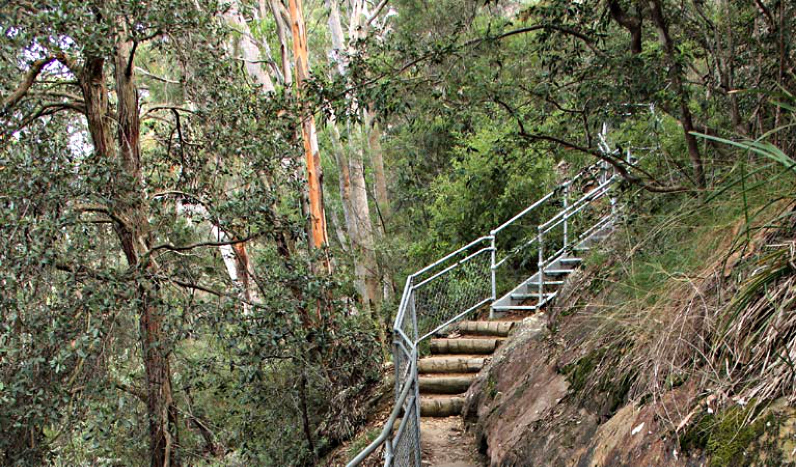 Caleys Lookout Track - WA Accommodation