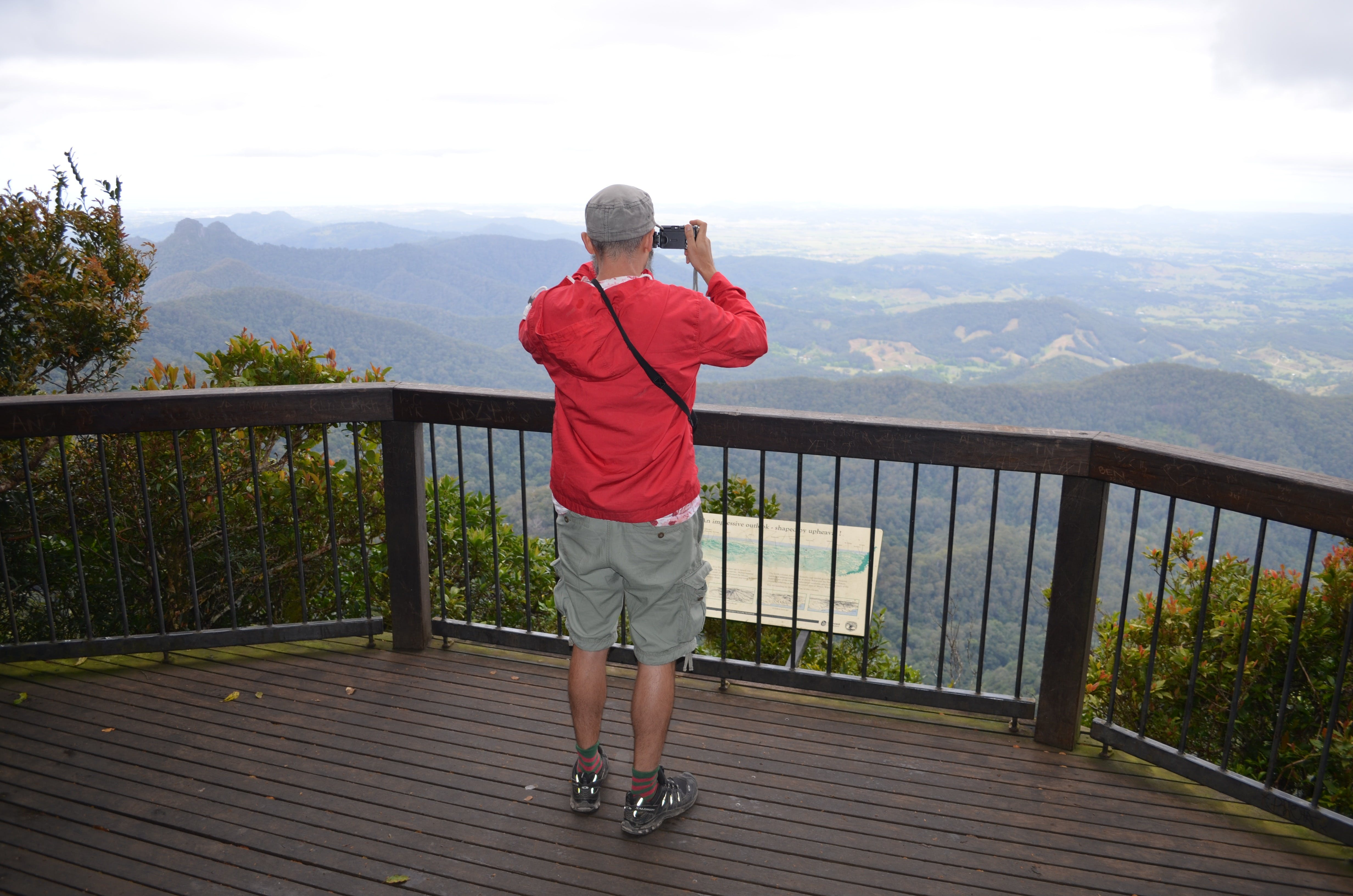 Best of All lookout track Springbrook National Park - WA Accommodation