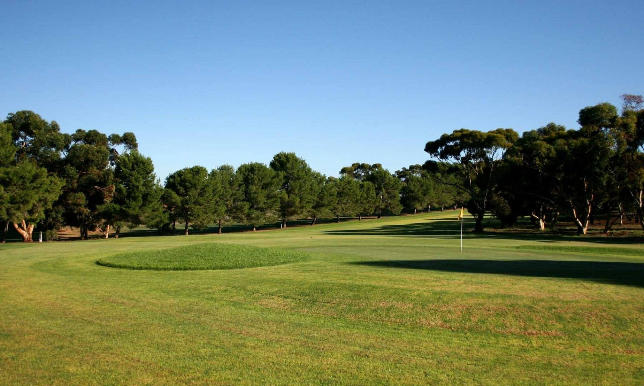 Mannum Golf Club - WA Accommodation