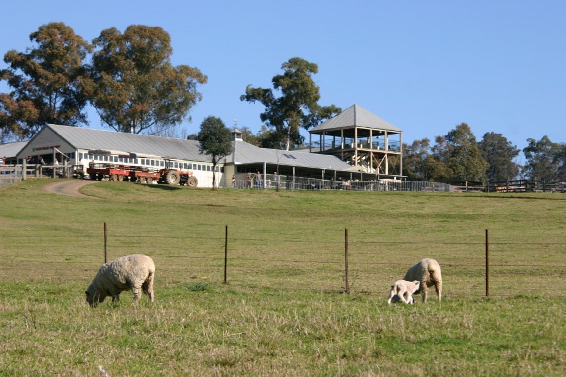 Calmsley Hill City Farm - WA Accommodation